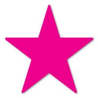 Magenta Star Magnet