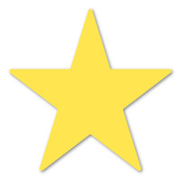 Yellow Star Magnet