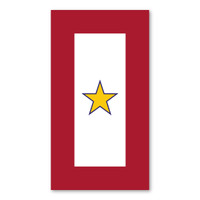 Gold Star Service Flag  Magnet