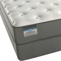 Simmons BeautySleep Alive Luxury Firm Mattress