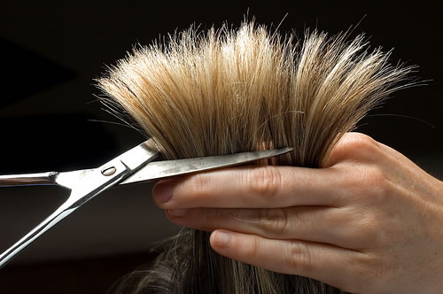 Beauty shears with a convex edge