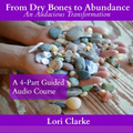 From Dry Bones To Abundance - An Audacious Journey of Transformation 4-Part Audio Course