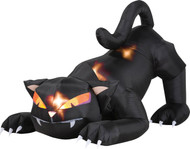 Black Cat W Turning Head