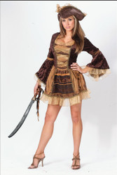Pirate Sassy Victorian Md Lg
