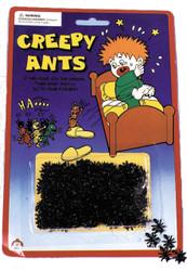 Ants Creepy