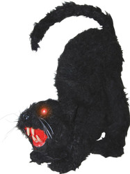 Cat W Lights Sound