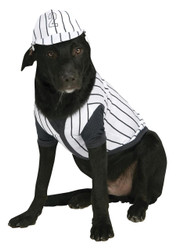Pet Costume Baseball Player Lg