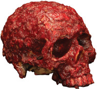 Blood Scab Resin Skull Prop