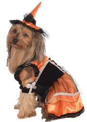 Pet Costume Orange Witch S