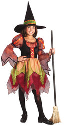 Child Fairy Witch Size Large