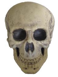 Skull Foam 9.5in