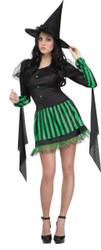 Wicked Witch Adlt Sm Md 2-8