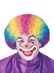 Wig Rainbow Clown