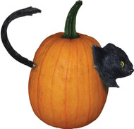 Cat Pumpkin Push In
