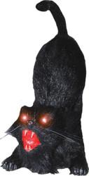 Animated Cat 21 Inch