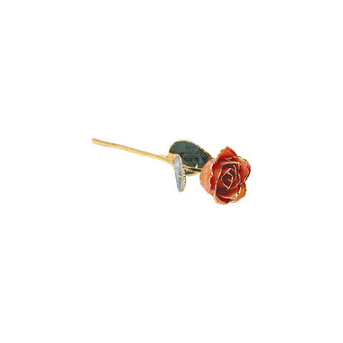 "Real 12"" Inch Lacquered Orange Colored Rose"