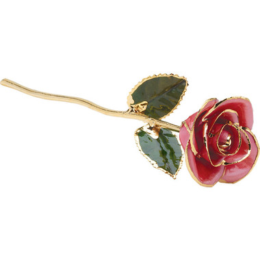 """Real 12"""" Inch Lacquered Pink Colored Rose"""