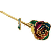 "Real 12"" Inch Lacquered Rainbow Colored Rose"
