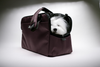 Chocolate Brown Sleepypod Atom Airline Approved Pet Carrier has openings on both ends so you can allow your pet to poke its head out.