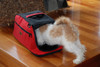 Sleepypod Air Red Airline Approved Pet Carrier has mesh zippered side windows