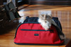 Sleepypod Air Red Airline Approved Pet Carriers zippered top & sides
