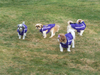 Siblings in purple Chillybuddy winter dog jackets