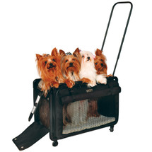 Large size can carry multiple toy breeds