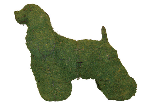 Cocker Spaniel Mossed Frame Topiary Dog