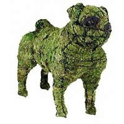 Pug Mossed Topiary Dog