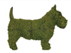 Scottie Mossed Topiary Dog