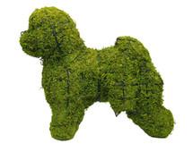Bichon Frise Mossed Topiary Dog Garden Sculpture