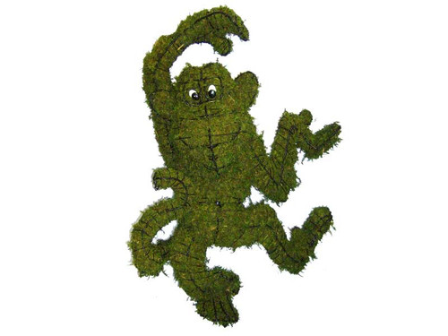 Funky Monkey Mossed Frame Topiary