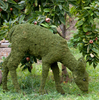 Mossed Doe Garden Topiary Sculptures look lovely in the landscape.