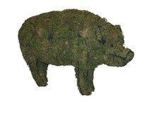 Mossed Pig Topiary Garden Sculpture