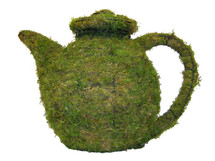 Teapot Mossed Topiary