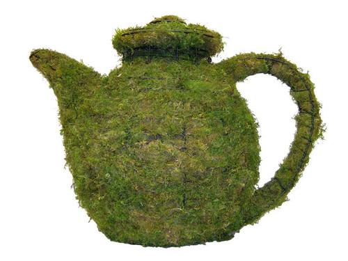 Teapot Mossed Topiary