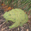 Frog mossed topiary in garden bed