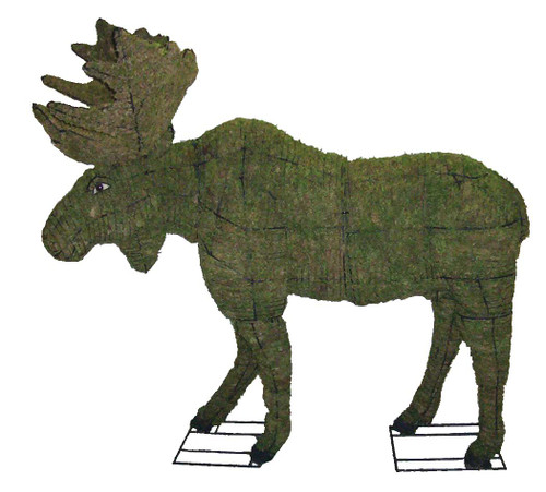 Mossed Moose Topiary