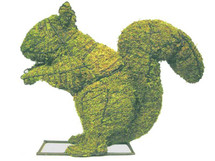 18 Inch Mossed Squirrel Topiary