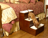 Three Step Wood Dog Stairs are easy to use by your pet
