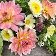 Dahlia, Gerrie Hoek, Waterlily, pink dahlia