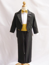 Boy Tuxedo Black with Gold Cummerbund, Tie