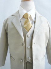 Boy Suit 2-Buttons Set in Beige with Gold