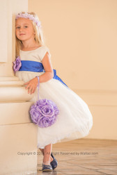 Flower Girl Dress Simple Classy Tulle White, Blue Royal