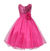 Rose Fuchsia Sequins Flower Girl Dress Kids Tutu Pageant Wedding Party Gown Formal Princess Dress US