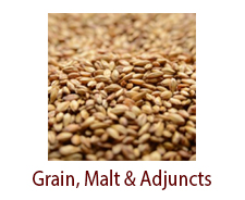 Grain, Malt & Adjuncts