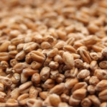 Weyermann Wheat Malt (Weizenmalz)