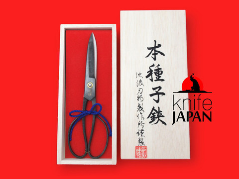 Ikenami Hamono hand-forged tanebasami scissors | 6-sun・18cm | Knife Japan