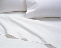 CALDERON 53Z-4234 SLEEPING PILLOWS