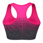 Hyped Sports Womens Bra Quick Dry HBack Yoga Running Fitness Underwear Rose